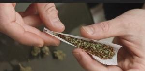 6491443-cannabis-cocaine-des-drogues-plus-cheres-et-moins-pures