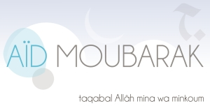 aid-moubarak-2013